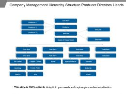 Company Management Hierarchy Structure Producer Directors Heads