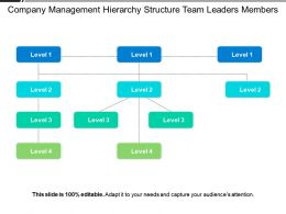 Company Management Hierarchy Structure Team Leaders Members