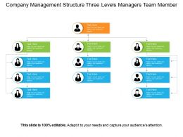 Company Management Structure Three Levels Managers Team Member