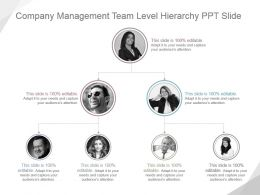 Company Management Team Level Hierarchy Ppt Slide