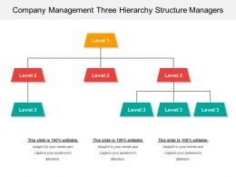 Company Management Three Hierarchy Structure Managers