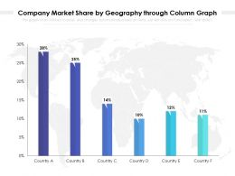Company Market Share By Geography Through Column Graph