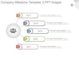 Company Milestone Template3 Ppt Images