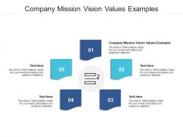 Company Mission Vision Values Examples Ppt Powerpoint Presentation Pictures Graphics Cpb