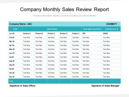 Company Monthly Sales Review Report