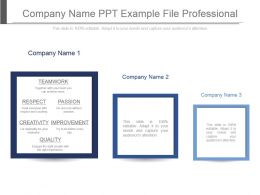 Company Name Ppt Example File Professional