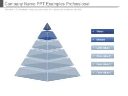 Company Name Ppt Examples Professional