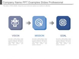 Company Name Ppt Examples Slides Professional