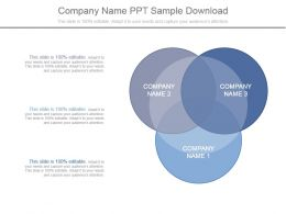 Company Name Ppt Sample Download