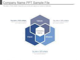 Company Name Ppt Sample File