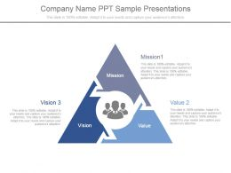 Company Name Ppt Sample Presentations