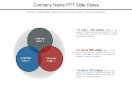Company Name Ppt Slide Styles