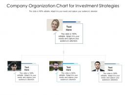 Company Organization Chart For Investment Strategies Infographic Template