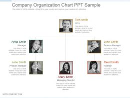 Company Organization Chart Ppt Sample