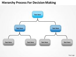 Company Organization Charts Hierarchy Process For Decision Making Powerpoint Templates 0515