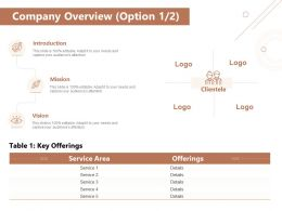 Company Overview Option Key Offerings Ppt Powerpoint Presentation Styles Graphics