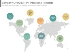 Company Overview Ppt Infographic Template