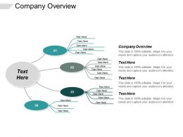 Company Overview Ppt Powerpoint Presentation Gallery Elements Cpb