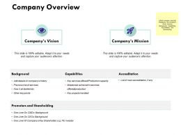 Company Overview Ppt Powerpoint Presentation Styles Elements