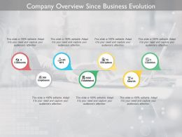 Company Overview Since Business Evolution