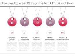 Company Overview Strategic Posture Ppt Slides Show