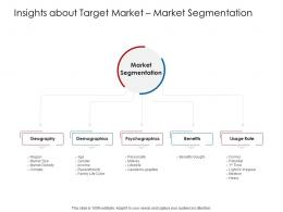 Company Playbook Insights About Target Market Segmentation Ppt Powerpoint Presentation Summary Icon