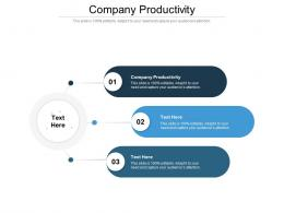 Company Productivity Ppt Powerpoint Presentation Portfolio Skills Cpb