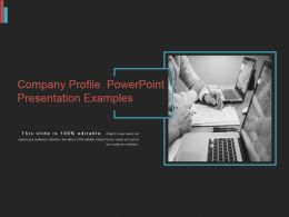 Company Profile Powerpoint Presentation Examples