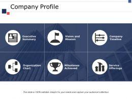 Company Profile Ppt Portfolio File Formats