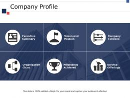 company_profile_ppt_portfolio_file_formats_Slide01