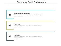 Company Profit Statements Ppt Powerpoint Presentation Professional Outfit Cpb