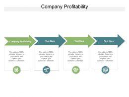 Company Profitability Ppt Powerpoint Presentation File Example Topics Cpb