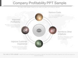 Company Profitability Ppt Sample