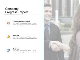 Company Progress Report Ppt Powerpoint Presentation Styles Templates Cpb