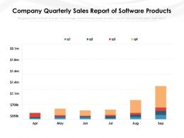 Company Quarterly Sales Report Of Software Products