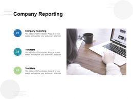 Company Reporting Ppt Powerpoint Presentation File Show Cpb