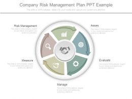 Company Risk Management Plan Ppt Example