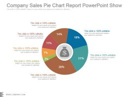 Company Sales Pie Chart Report Powerpoint Show