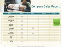Company Sales Report Business Planning Actionable Steps Ppt Show Good