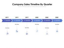 Company Sales Timeline By Quarter