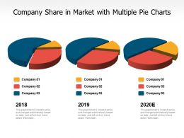 Company Share In Market With Multiple Pie Charts