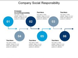 Company Social Responsibility Ppt Powerpoint Presentation Pictures Templates Cpb