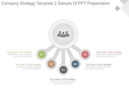 Company Strategy Template2 Sample Of Ppt Presentation