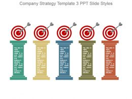 Company Strategy Template 3 Ppt Slide Styles