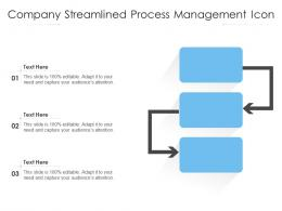 Company Streamlined Process Management Icon