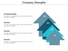 Company Strengths Ppt Powerpoint Presentation Gallery Example Cpb