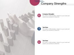 Company Strengths Ppt Powerpoint Presentation Guide Cpb