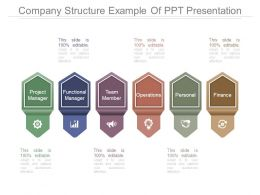 Company Structure Example Of Ppt Presentation