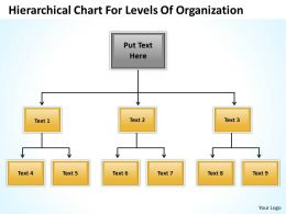 Company Structure Flow Chart Hierarchical For Levels Of Organization Powerpoint Templates 0515