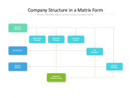 Company Structure In A Matrix Form